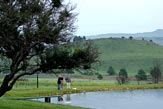 Schaefers' Halt / Dullstroom  Accommodation -  Things to Do